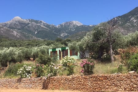 The Olive Shack - Kardamyli
