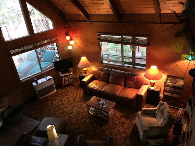 cabin.BLS: pet friendly 2br+loft, wifi, sleeps 12
