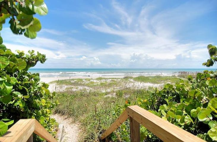 NEW!  REMODELED 2 BR Oceanfront Condo 3001!