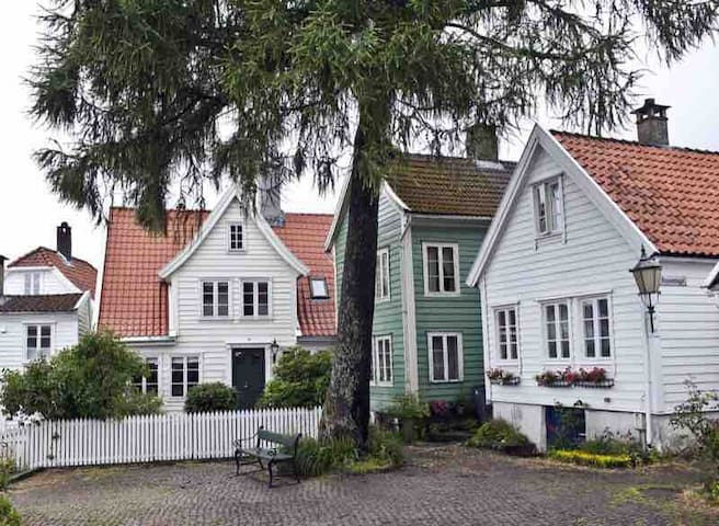 Charming wooden house from 1819 - Historcal center