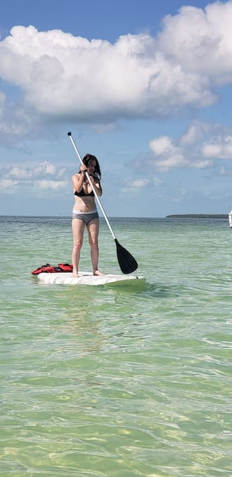 Recent pictures of paddleboarding at a nearby secluded sandbar