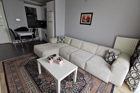 A3 Luxurious Modern themed Apartment in istanbul