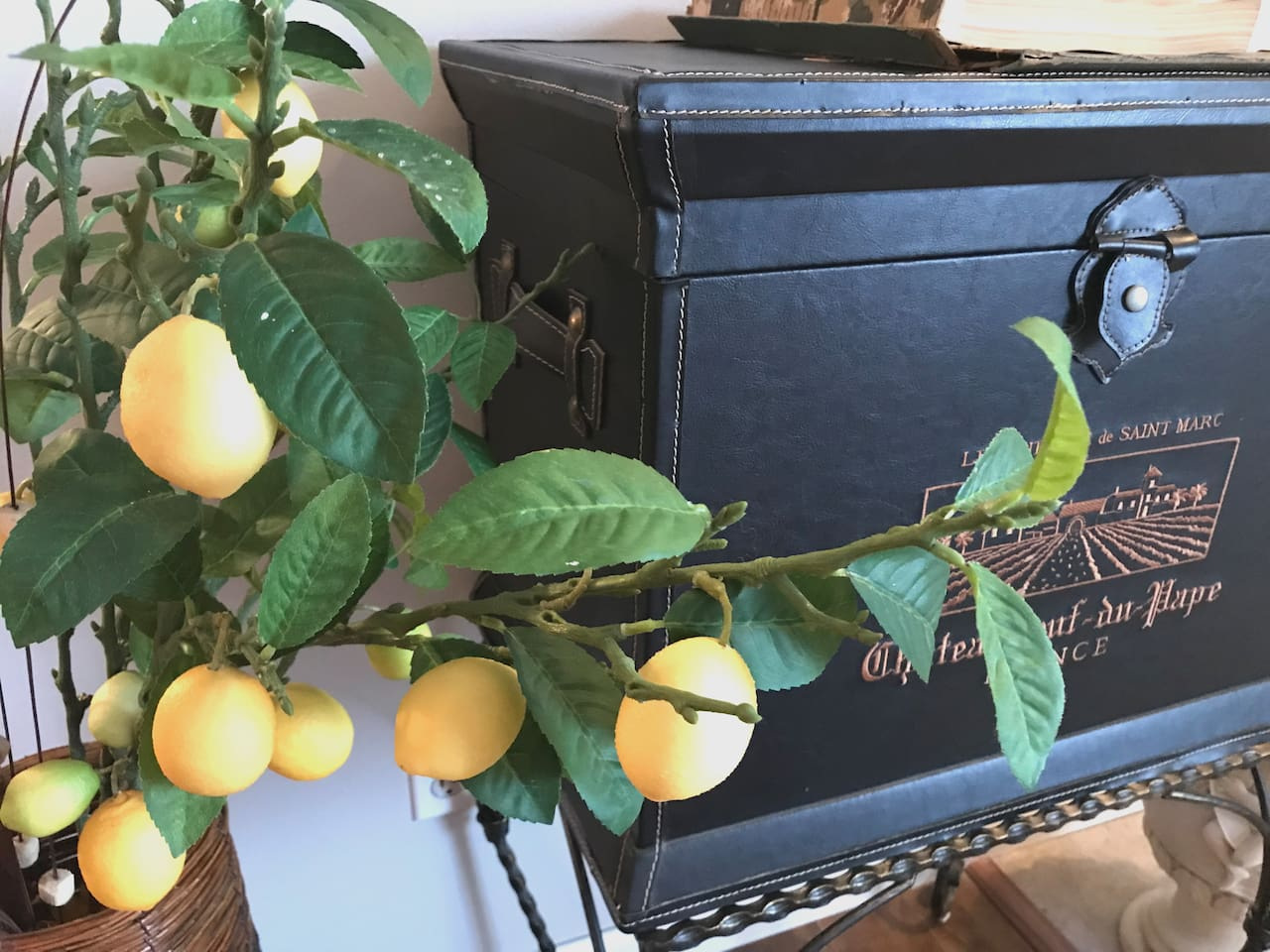 Lemon Tree Home!!! The beautiful Lemon tree in front of you when you check-in my house.