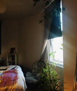 Beautiful Room with plants