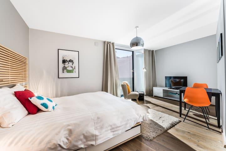 Furnished Apartment Geneva Center - Geneve - Huoneisto