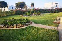 Beautiful apartment with garden near beaches.