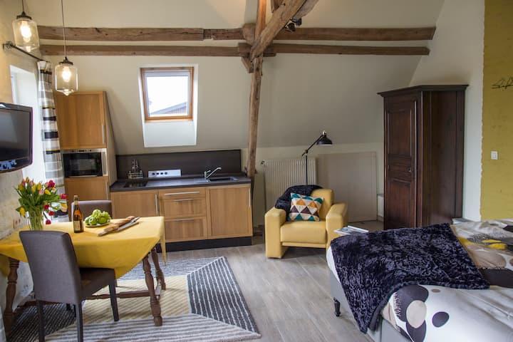 Luxe loft,  op 5 km van Mons