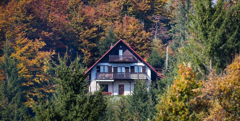 Gorski raj / The Mountain Paradise Holiday House