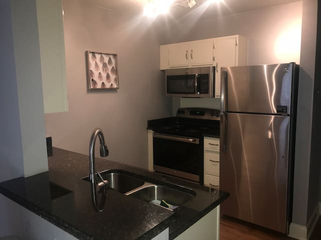 Tastefully Decorated 2 Bedroom High Rise Downtown
