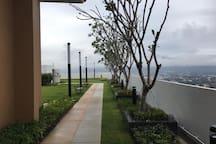 The top floor garden