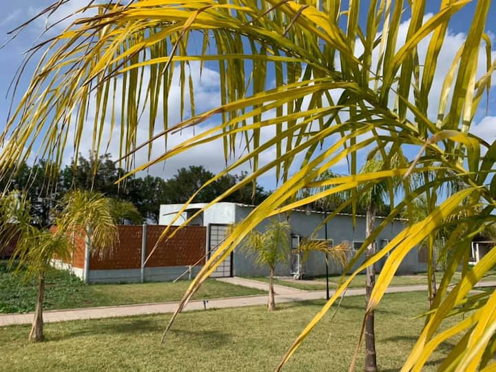 Palm Grove Cosy Cottage 1