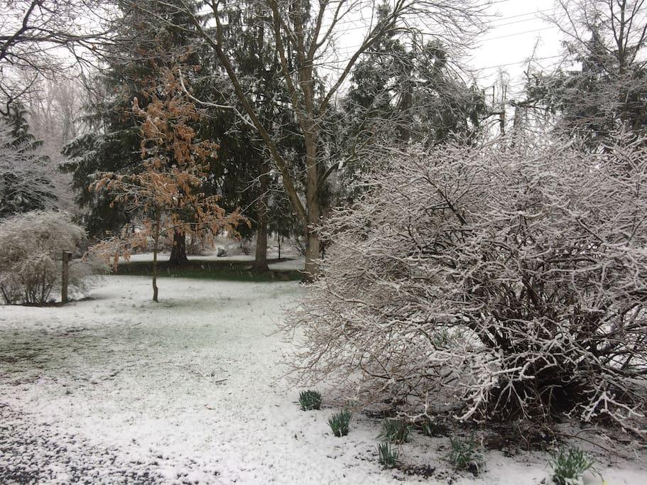 Winter around the grounds