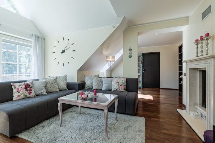 Lovely spacious apartment in the city center