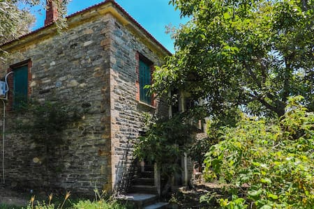 Cottage in olive grove in Pelion near the sea