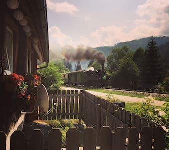 Riverside Retreat. - Ramingstein - Almhütte