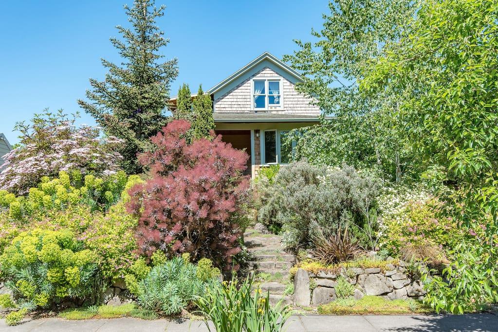 Mississippi Arts Nopo Garden Home Houses For Rent In Portland Oregon United States