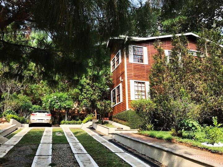 "Villa ""Carmen"" a modern natural space within city"