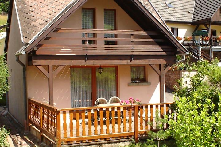 "Petite Maisonnette "" Au bois Vert"" - Wangenbourg-Engenthal - Casa"