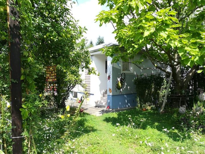 Art Garden House next to Danube river