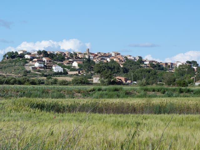 Ca L'Alícia - Bellmunt d'Urgell - Rumah