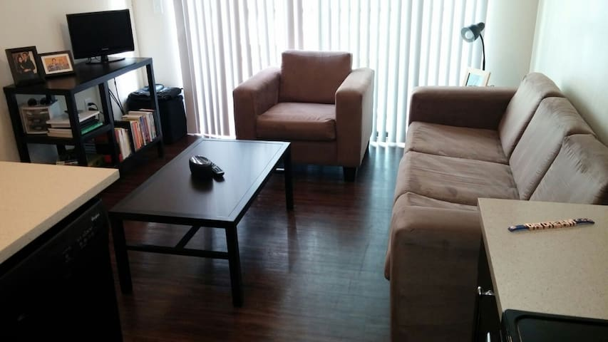Great apt.  2 miles from downtown! - Austin - Apartment