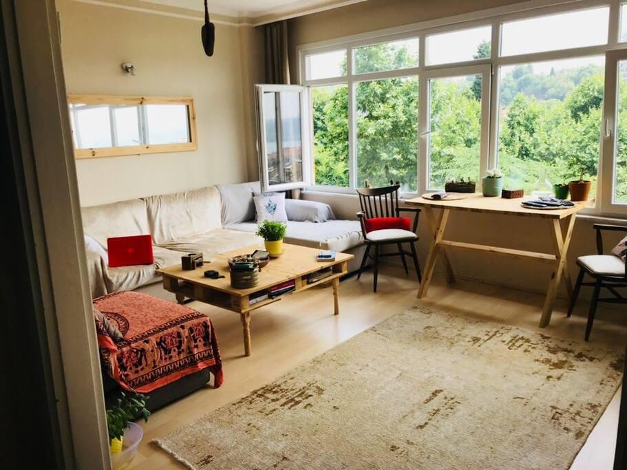 Living Room / Yaşam Alanı