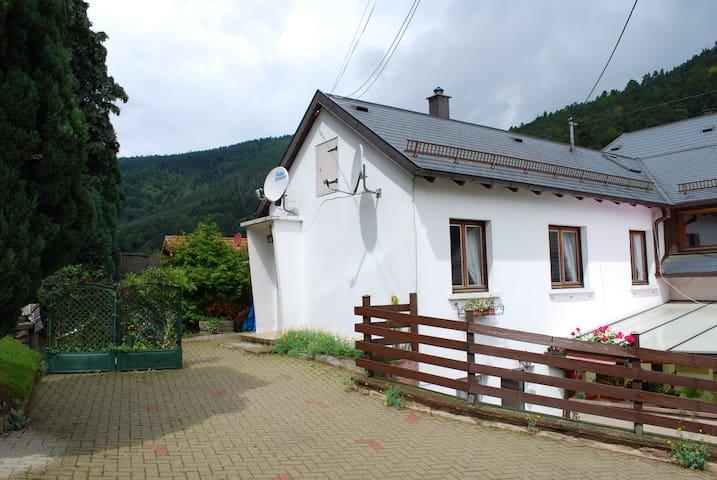 """Bienvenue chez """"Bri'Gîte"""" - Wangenbourg-Engenthal - Huoneisto"""