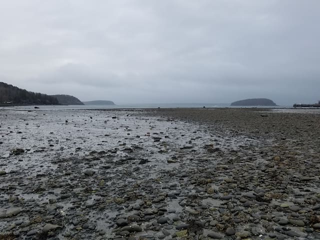 View from an inlet near Bar Harbor