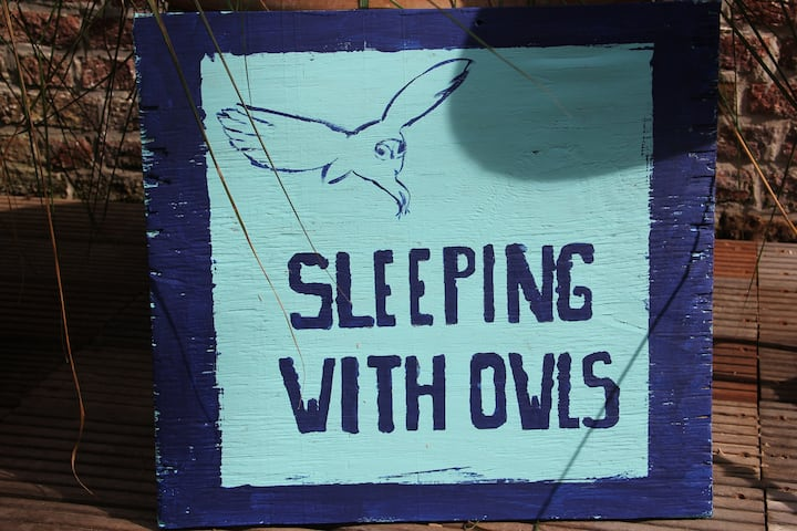 "LOGIES : OKSDONK  ""Sleeping with owls"""