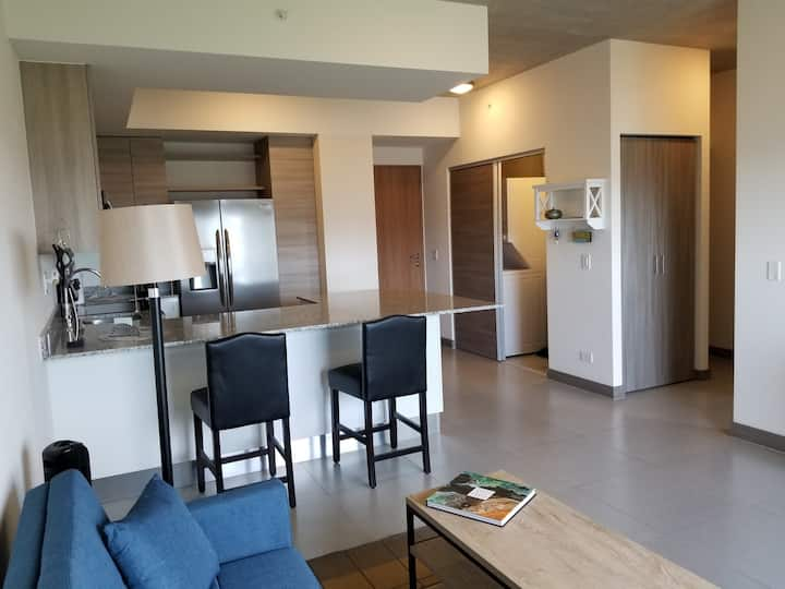 CORPORATE Apts - Full Service, 1-bedrm (3-mo min)