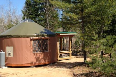 Yurt & Tiny Cabin-Pet Friendly, Remote, Dark Sky