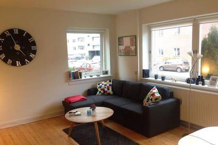Hyggelig 2-værelses lejlighed i midten af Odense