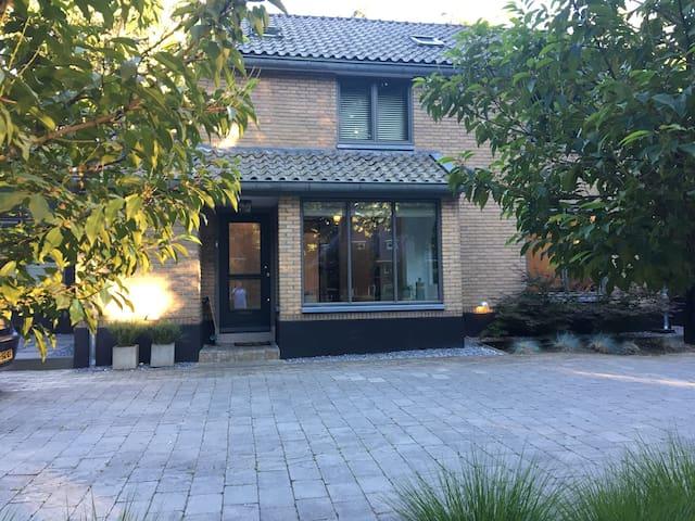 Modern villa with huge garden