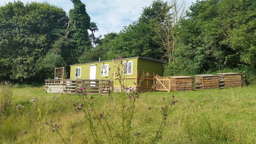 Cosy and Quirky 1 Bed Hideaway, South Hams