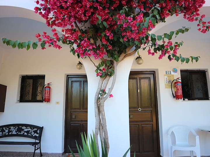 Cozy Traditional Apt Oliaria N6 2 mins to beach