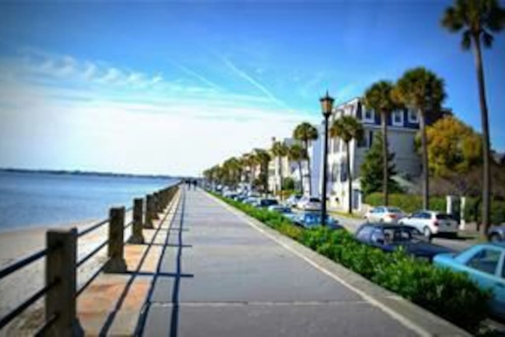 One Bedroom Historic Apartment Apartments For Rent In Charleston South Carolina United States