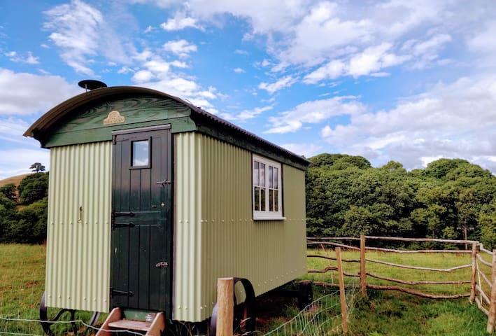 Cefnmachllys Shepherd's Hut