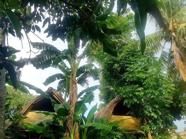 Desa Ku (Bird House) 05