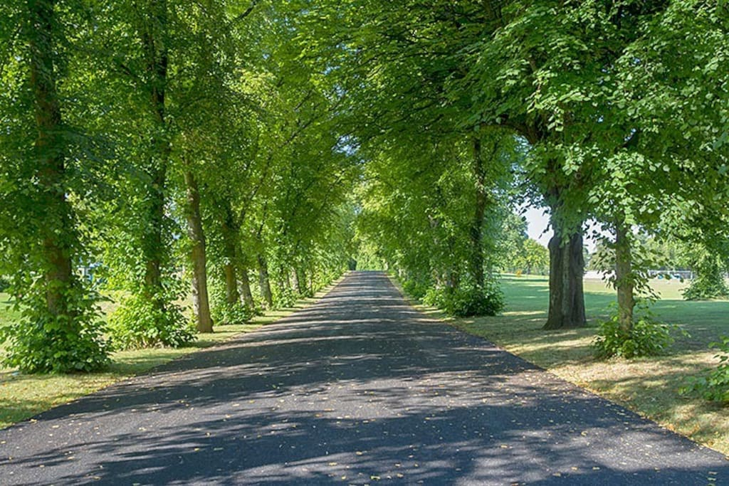 Bellahouston park is only a few minutes walk.