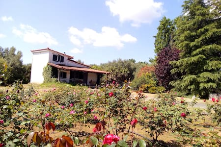 Beautiful cottage with a rose garden. - Meropi - 连栋住宅