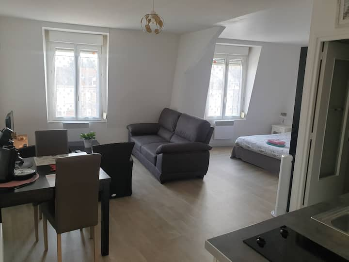 ARRAS gare Wellington 33m2-appartement entier+ VTT