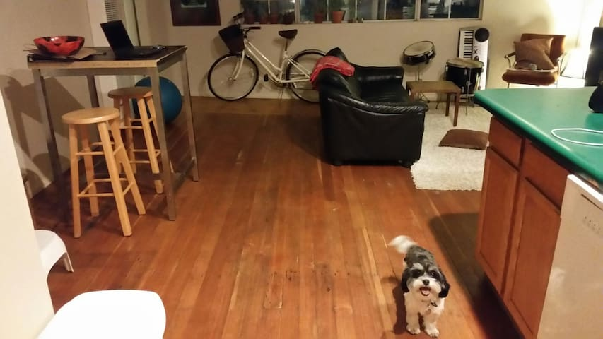 Big bohemian 1BR in Eagle Rock - Los Ángeles - Loft