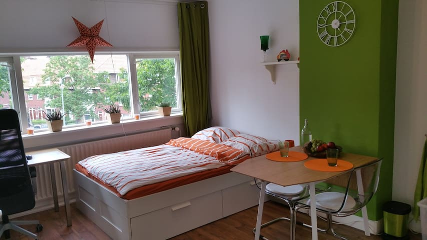 Harmonic bright room near City Center Goningen