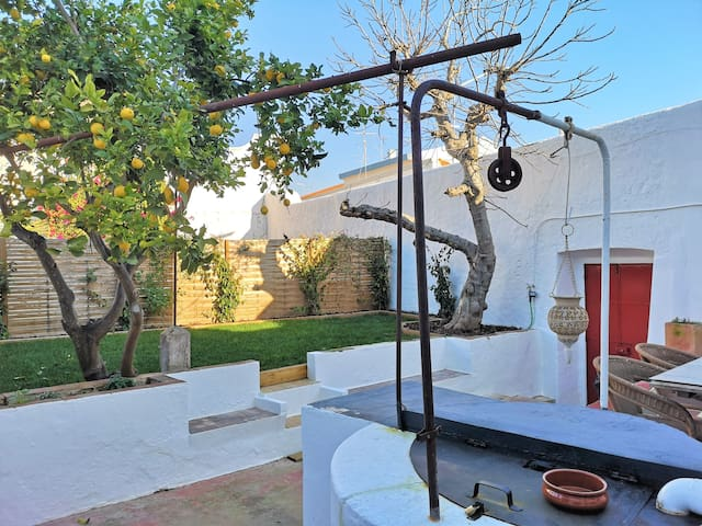 LemonTree House & garden  *Tavira historic centre*