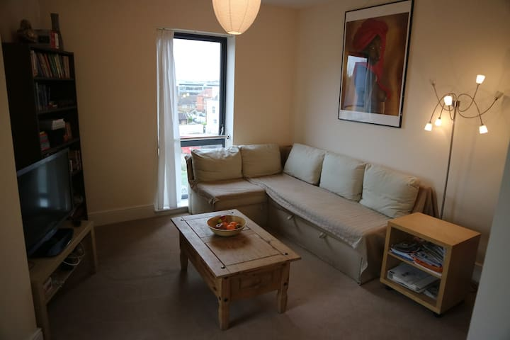 Spacious apartment near Heathrow in Uxbridge - Uxbridge - Daire