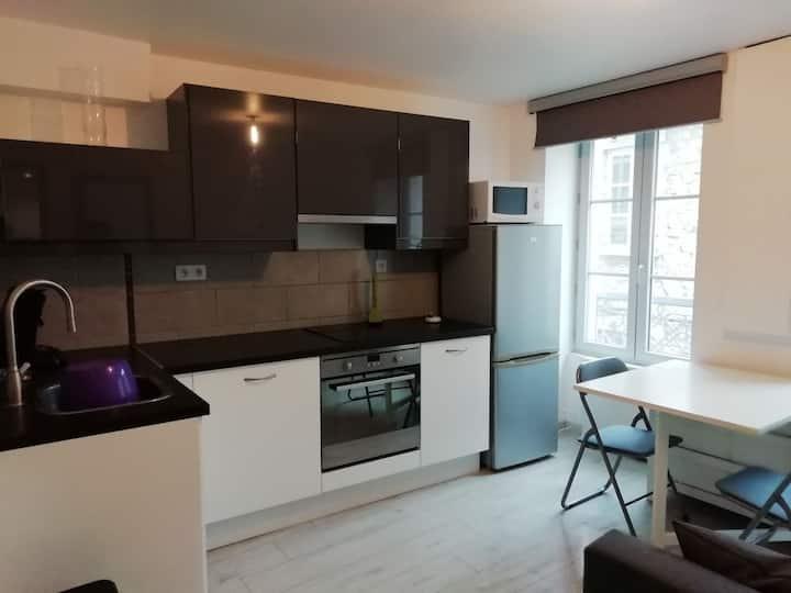 Appartement T2 entier 27m2 hypercentre de vienne