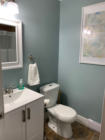 This is the en-suite bathroom complete with a single shower, toilet and vanity.