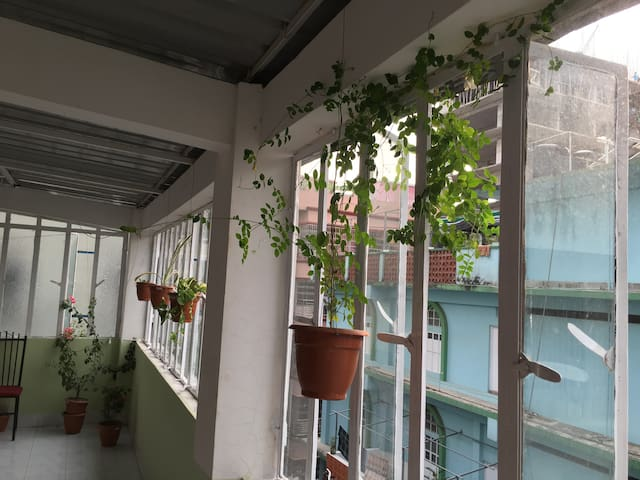 Furnished Flat  with Terrace