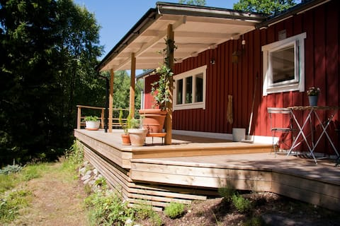 Cozy cottage + guesthouse and 2400m2 forestplot