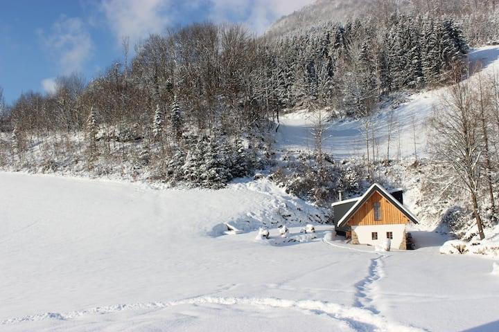 Ferienhaus am Biohof Hobisch, Urlaub im Grünen